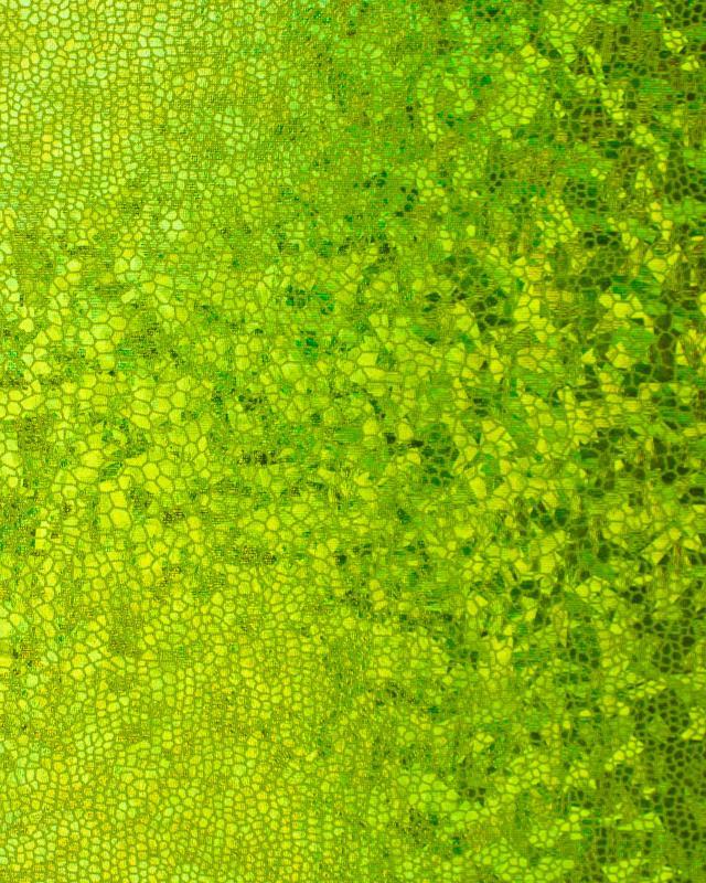 Lycra Imitation Serpent Vert Spring - Tissushop