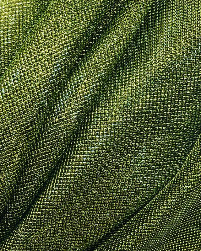 Lurex Metallic Mesh 2 Tones Black / Spring Green - Tissushop