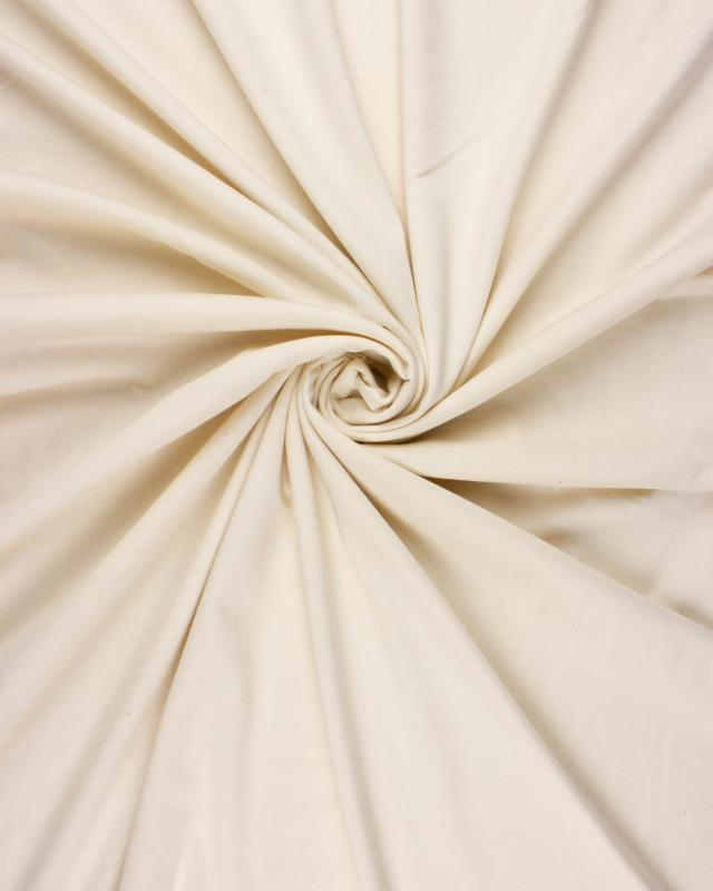 Plain Combed Cotton Jersey Ivory - Tissushop